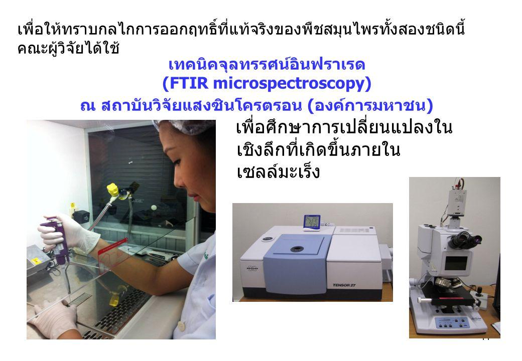 (FTIR microspectroscopy)
