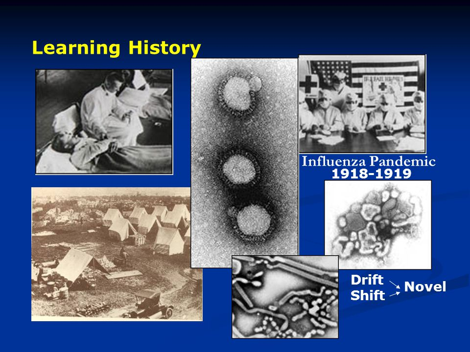 Learning History Influenza Pandemic 1918-1919 Drift Shift Novel