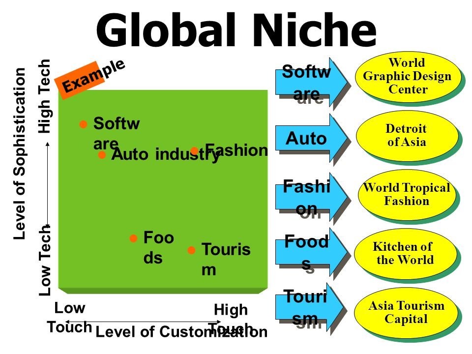 Global Niche Software Auto Fashion Foods Tourism Software Fashion