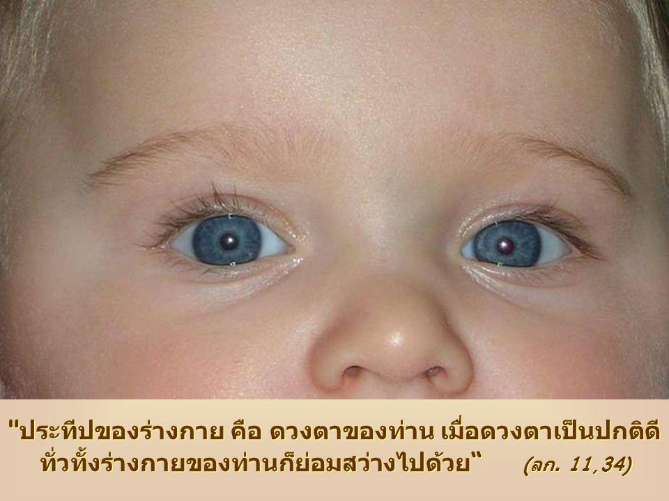 ประทีปของร่างกาย คือ ดวงตาของท่าน เมื่อดวงตาเป็นปกติดีทั่วทั้งร่างกายของท่านก็ย่อมสว่างไปด้วย (ลก.