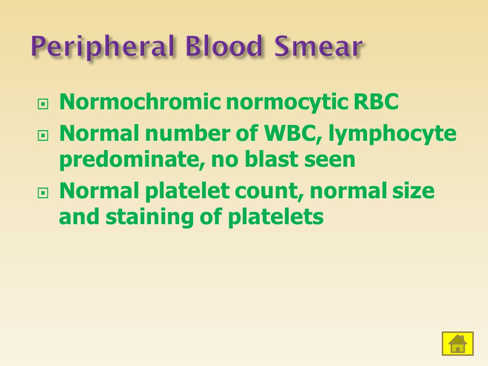Peripheral Blood Smear
