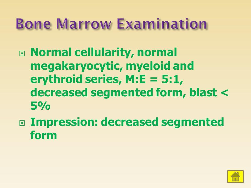 Bone Marrow Examination