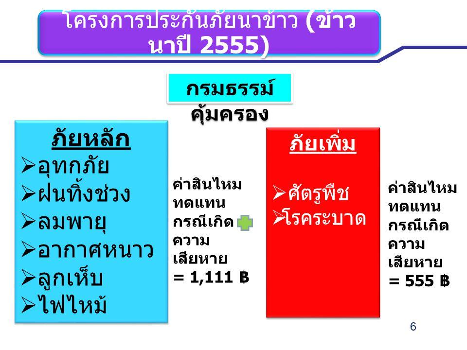 โครงการประกันภัยนาข้าว (ข้าวนาปี 2555)