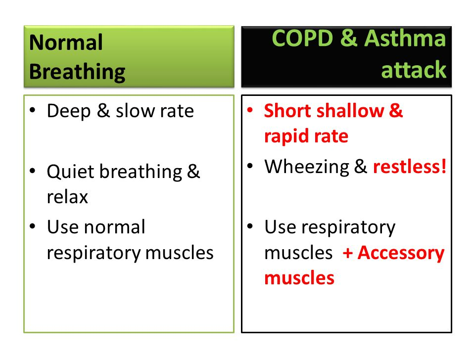 COPD & Asthma attack Normal Breathing Deep & slow rate