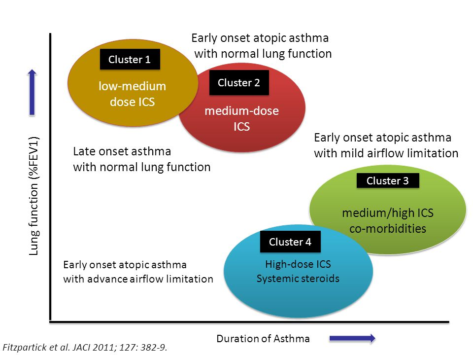 Early onset atopic asthma with normal lung function