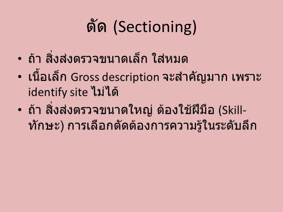ตัด (Sectioning) ถ้า สิ่งส่งตรวจขนาดเล็ก ใส่หมด