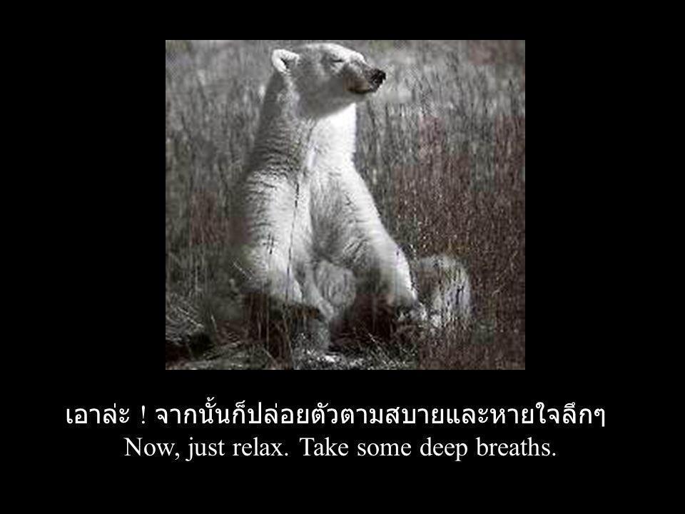 เอาล่ะ ! จากนั้นก็ปล่อยตัวตามสบายและหายใจลึกๆ