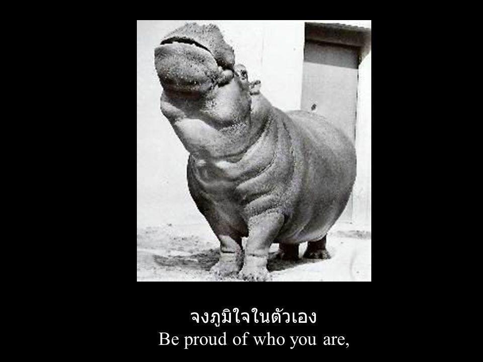 จงภูมิใจในตัวเอง Be proud of who you are,