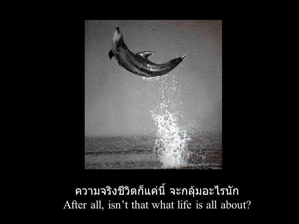 ความจริงชีวิตก็แค่นี้ จะกลุ้มอะไรนัก