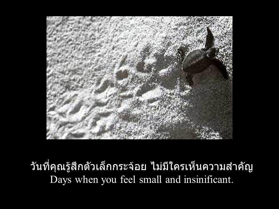 วันที่คุณรู้สึกตัวเล็กกระจ้อย ไม่มีใครเห็นความสำคัญ