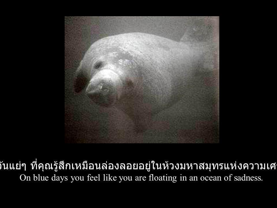 วันแย่ๆ ที่คุณรู้สึกเหมือนล่องลอยอยู่ในห้วงมหาสมุทรแห่งความเศร้า