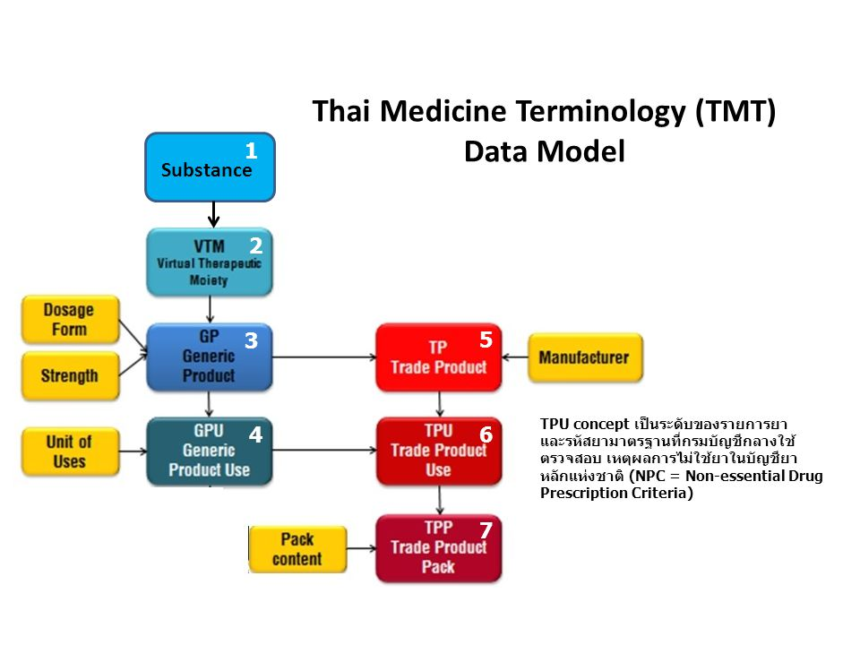 Thai Medicine Terminology (TMT)