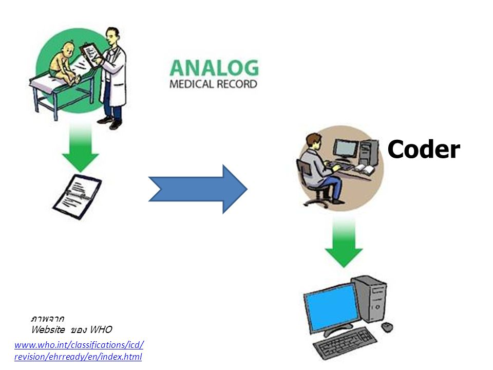 Coder ภาพจาก Website ของ WHO www.who.int/classifications/icd/