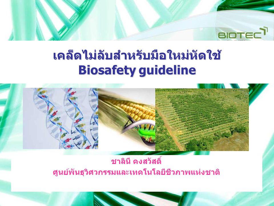 เคล็ดไม่ลับสำหรับมือใหม่หัดใช้ Biosafety guideline