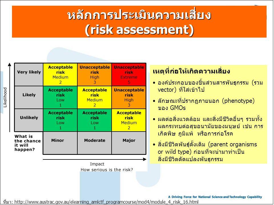 หลักการประเมินความเสี่ยง (risk assessment)