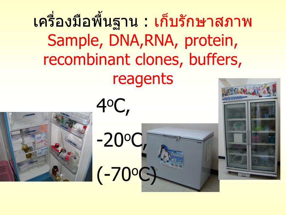 เครื่องมือพื้นฐาน : เก็บรักษาสภาพ Sample, DNA,RNA, protein, recombinant clones, buffers, reagents