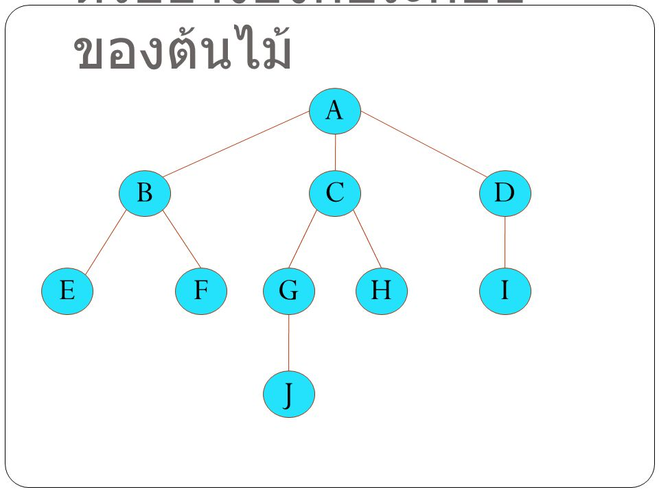 ตัวอย่างองค์ประกอบของต้นไม้