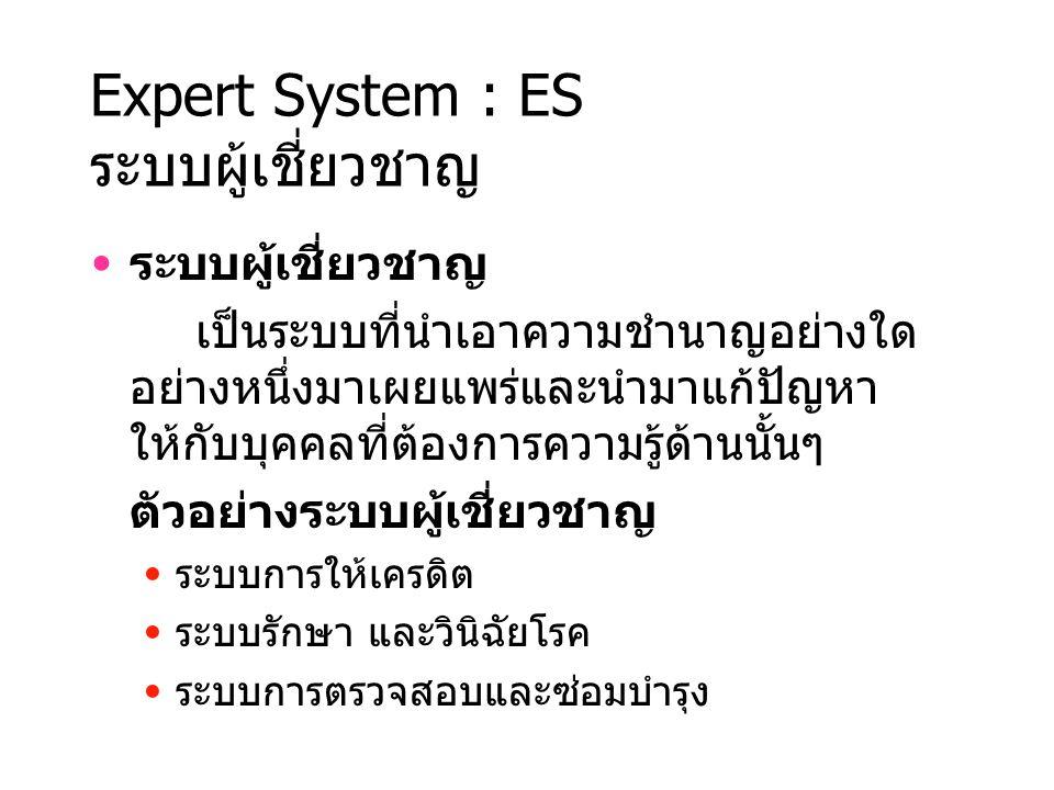 Expert System : ES ระบบผู้เชี่ยวชาญ