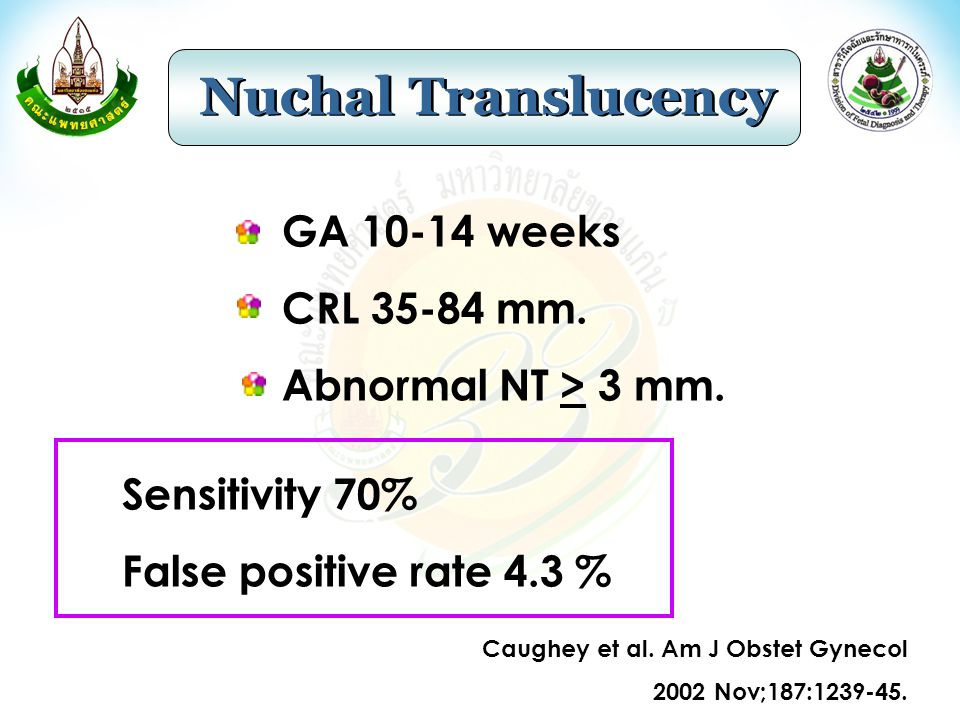 Nuchal Translucency GA 10-14 weeks CRL 35-84 mm.