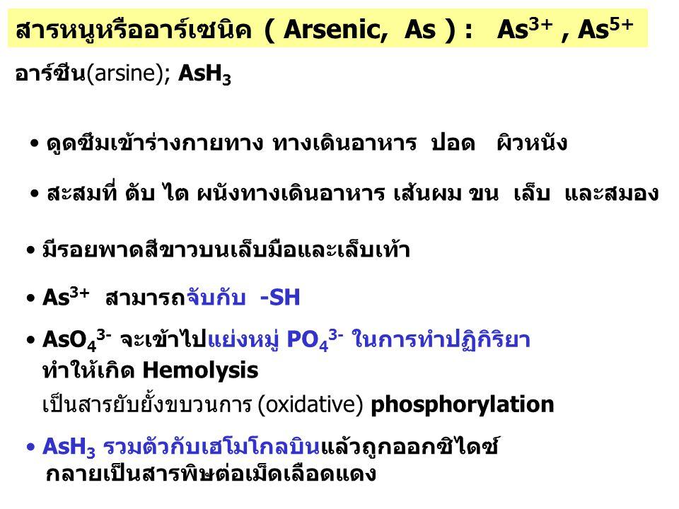 สารหนูหรืออาร์เซนิค ( Arsenic, As ) : As3+ , As5+