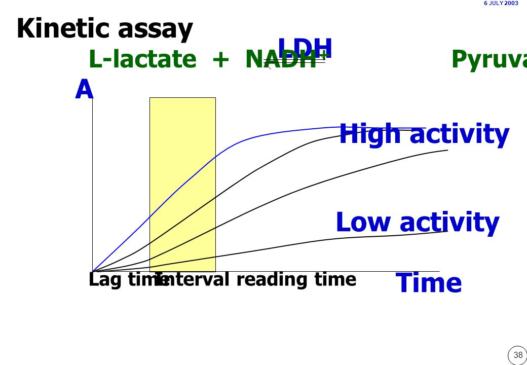 Kinetic assay LDH A High activity Low activity Time
