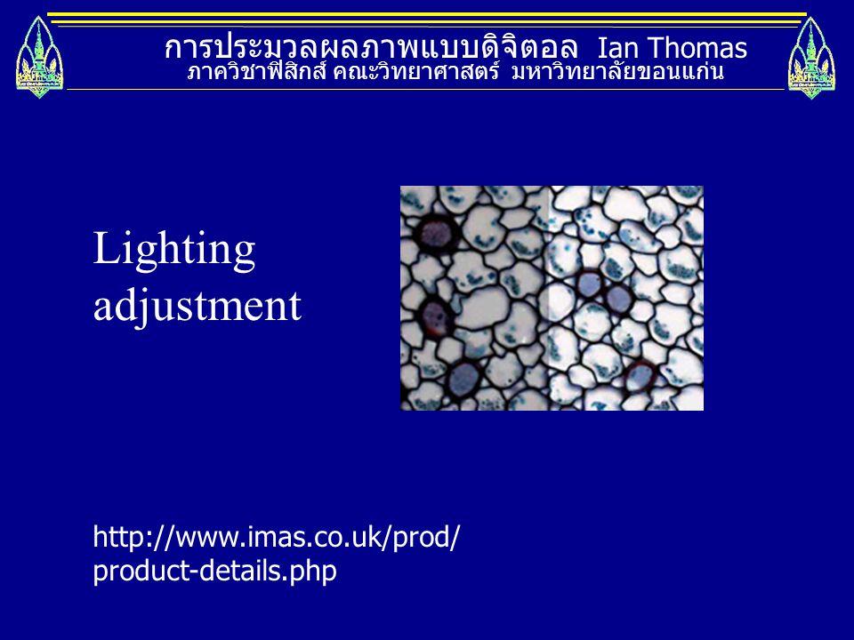 Lighting adjustment การประมวลผลภาพแบบดิจิตอล Ian Thomas