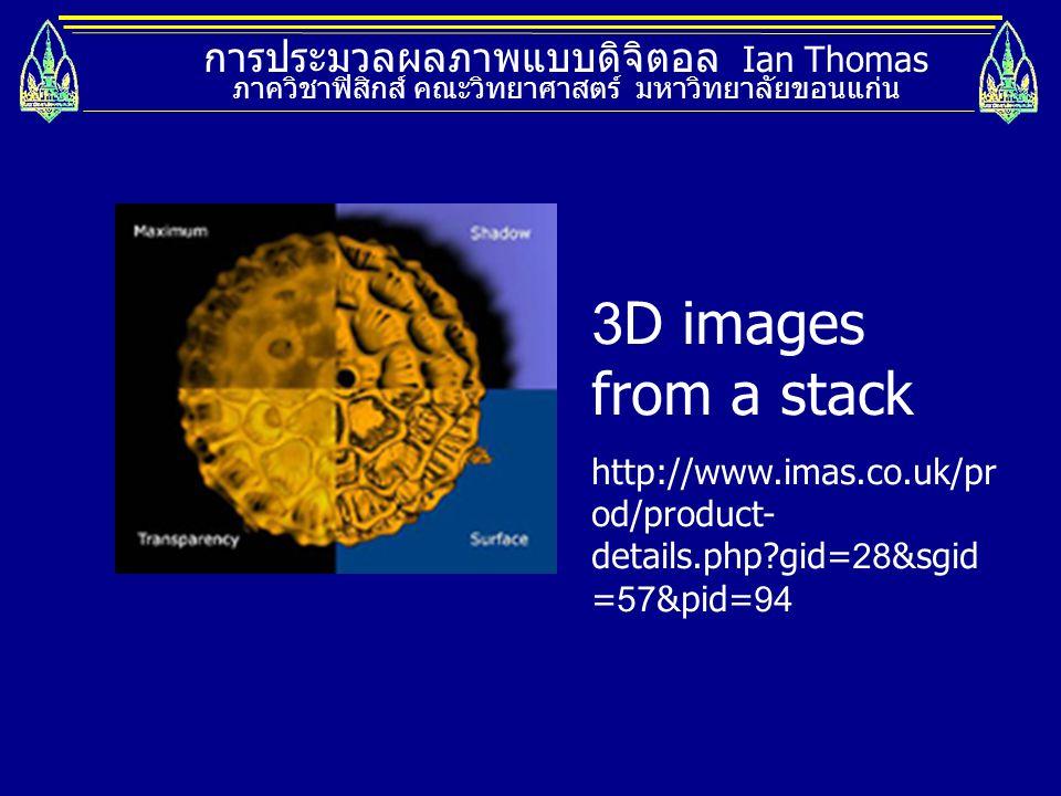 3D images from a stack การประมวลผลภาพแบบดิจิตอล Ian Thomas