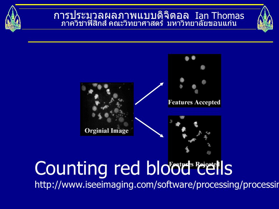 Counting red blood cells