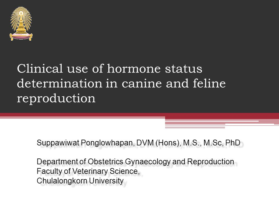 Clinical use of hormone status determination in canine and feline reproduction