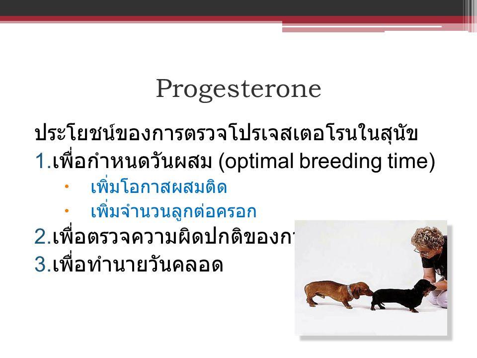 Progesterone ประโยชน์ของการตรวจโปรเจสเตอโรนในสุนัข