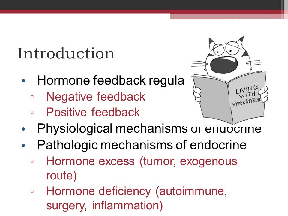 Introduction Hormone feedback regulatory system