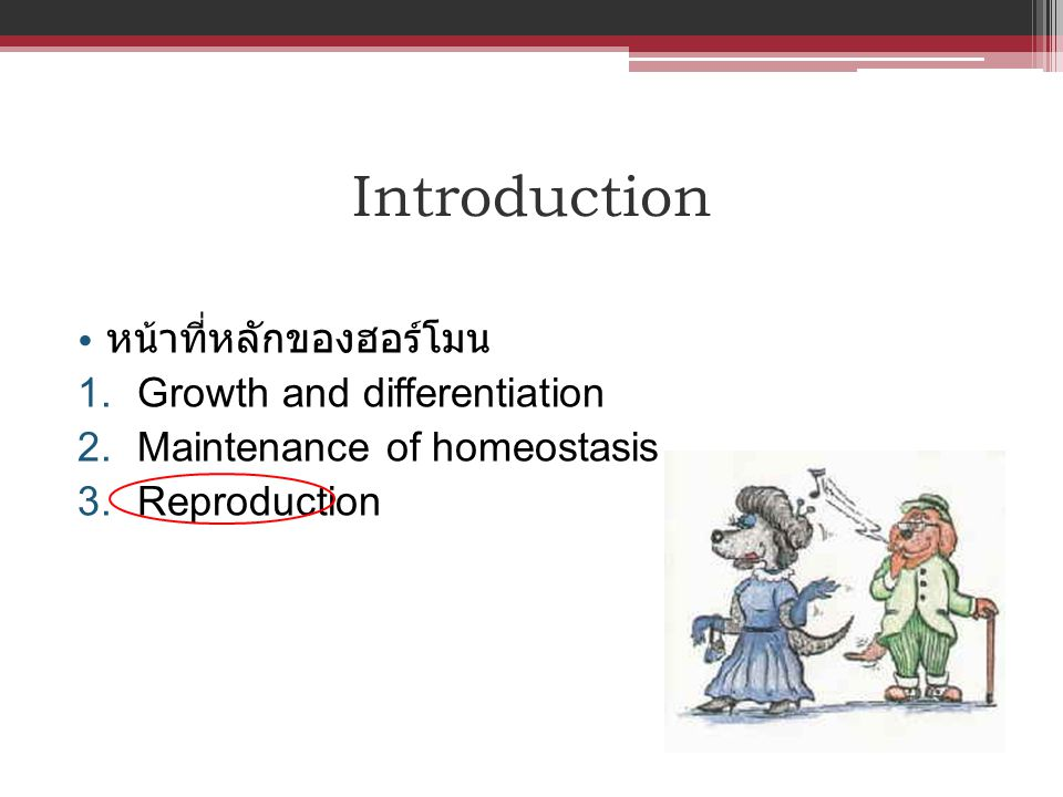 Introduction หน้าที่หลักของฮอร์โมน Growth and differentiation