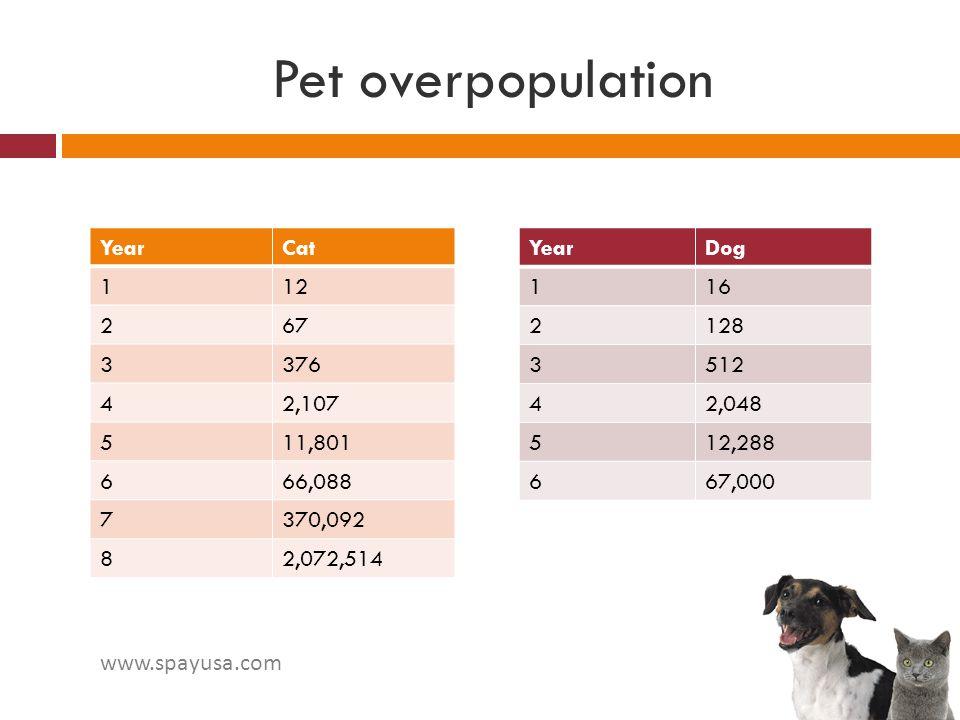 Pet overpopulation Year Cat 1 12 2 67 3 376 4 2,107 5 11,801 6 66,088