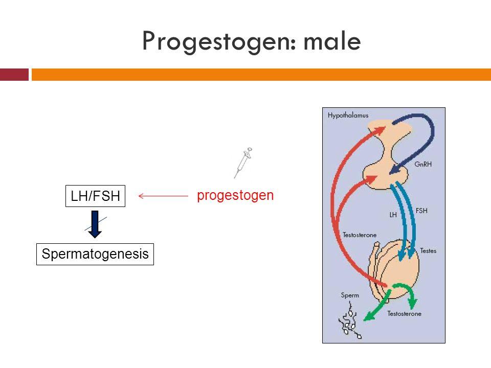 Progestogen: male LH/FSH progestogen Spermatogenesis