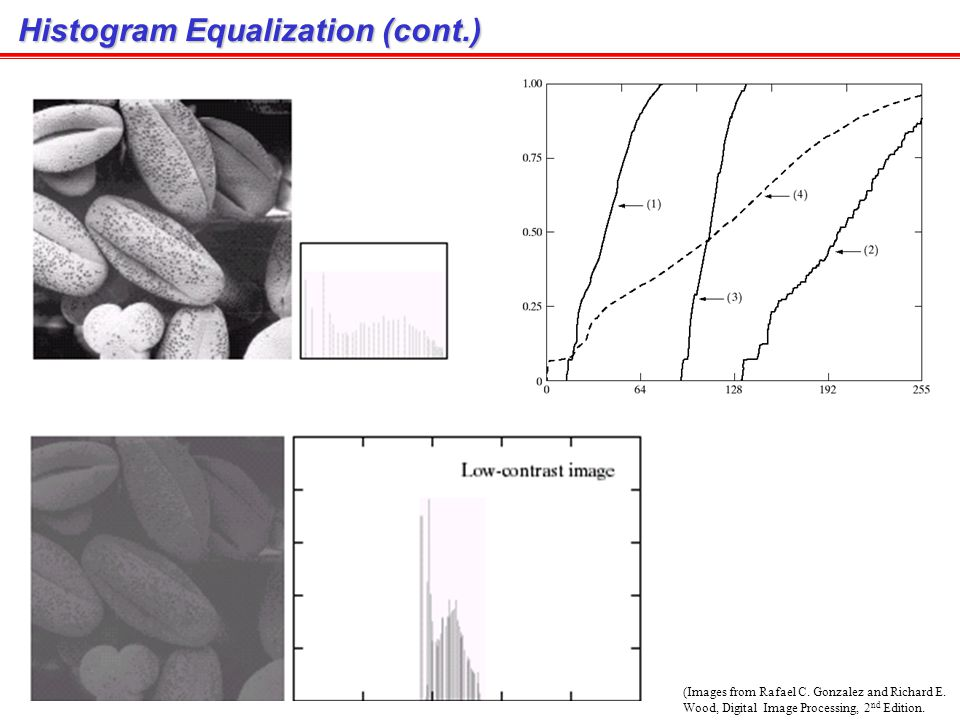 Histogram Equalization (cont.)