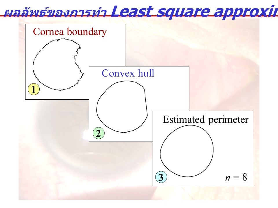 ผลลัพธ์ของการทำ Least square approximation