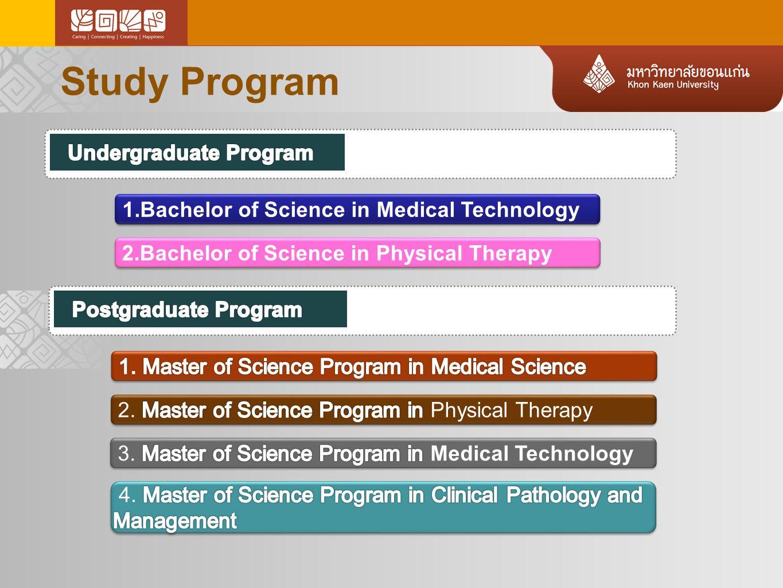 Study Program Undergraduate Program
