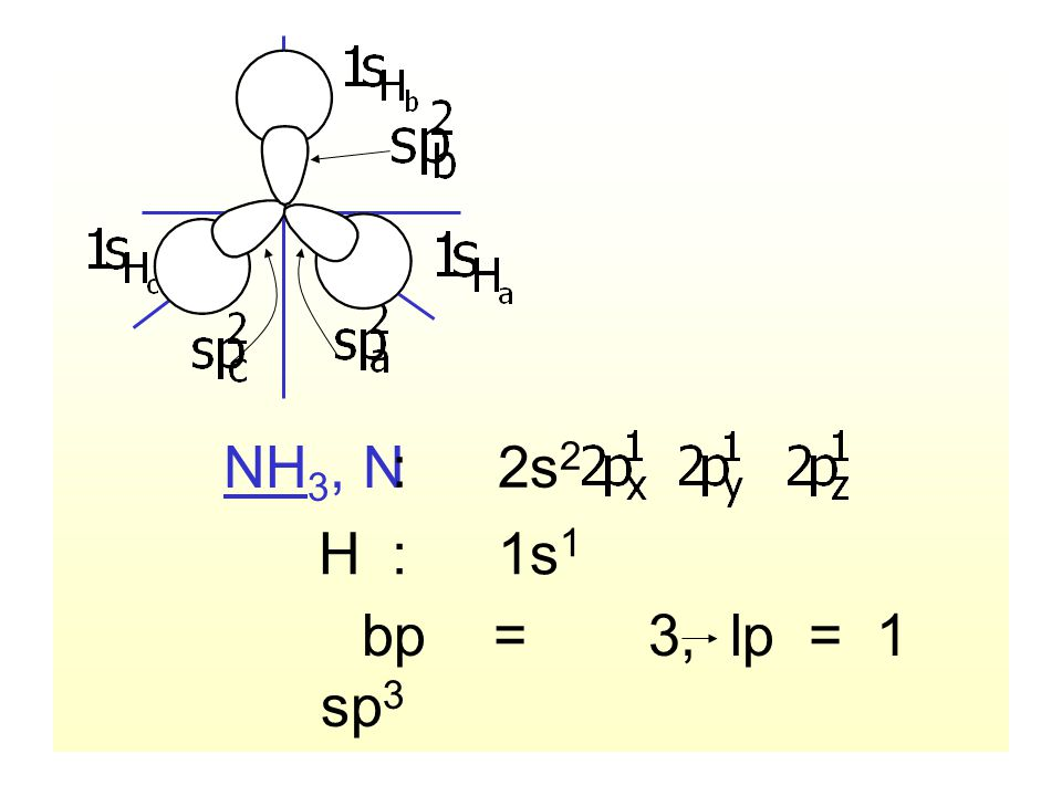 NH3, N : 2s2 H : 1s1 bp = 3, lp = 1 sp3 hybridization