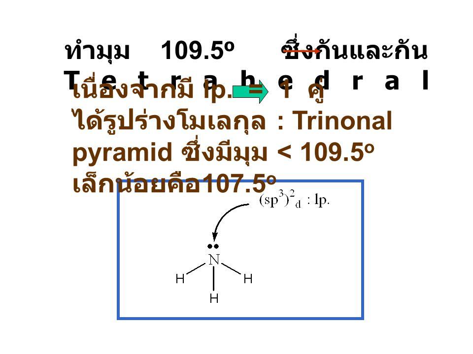 ทำมุม 109.5o ซึ่งกันและกัน Tetrahedral