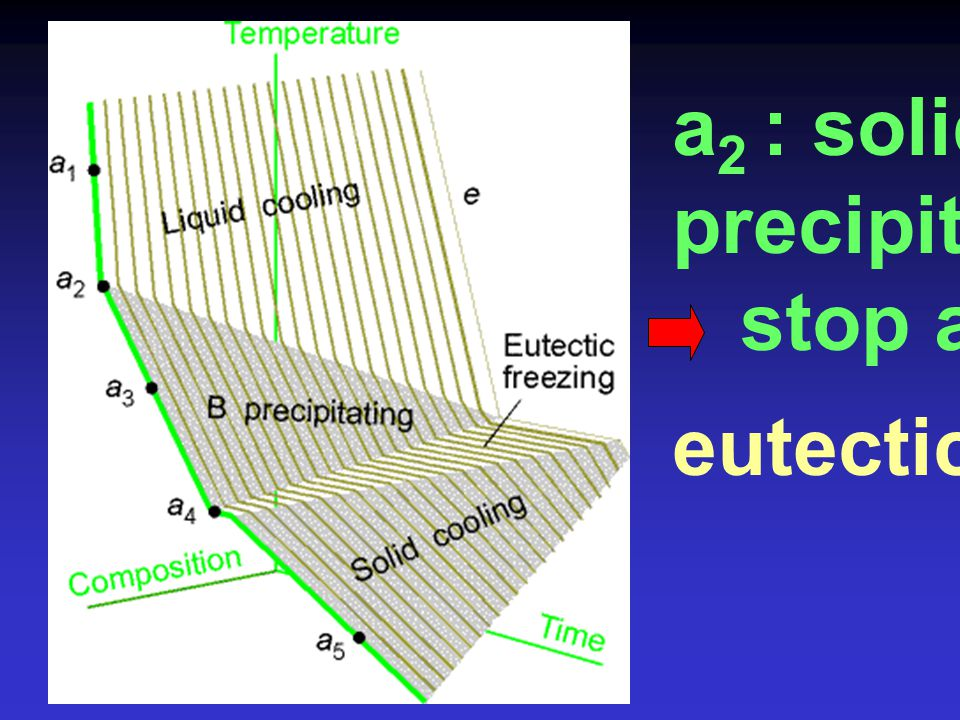 a2 : solid B precipitated stop at a4 eutectic pt.
