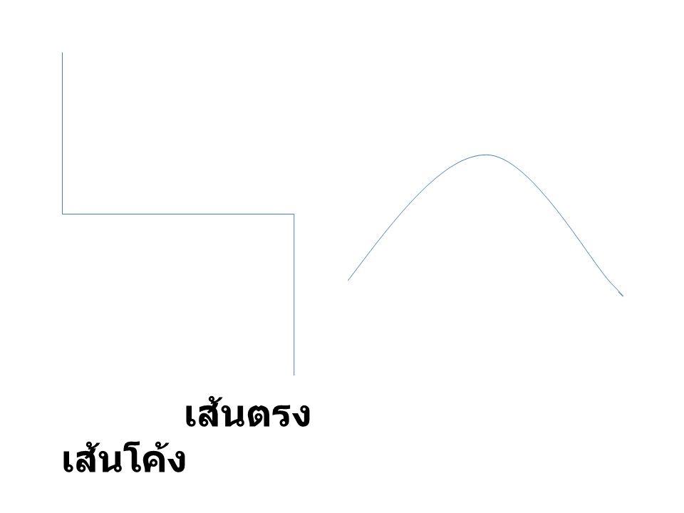 เส้นตรง เส้นโค้ง