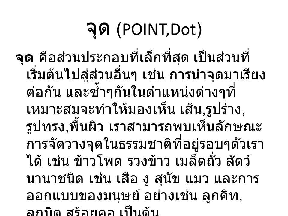 จุด (POINT,Dot)