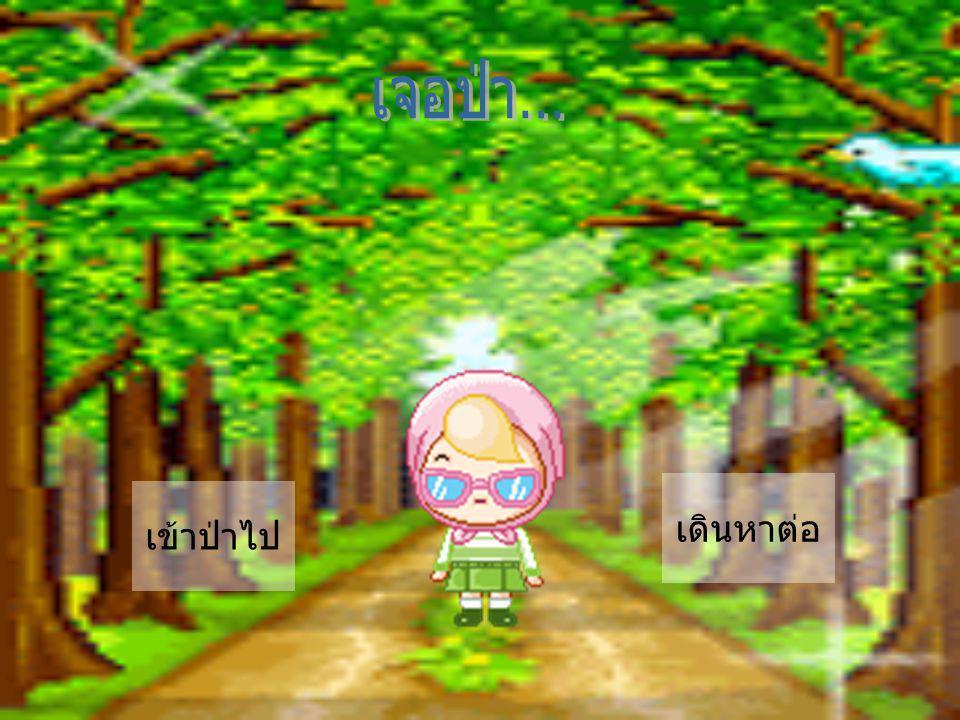 เจอป่า... เดินหาต่อ เข้าป่าไป