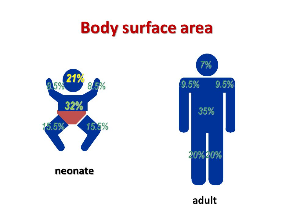 Body surface area 7% 9.5% 35% 20% 21% 8.5% 32% 15.5% neonate adult