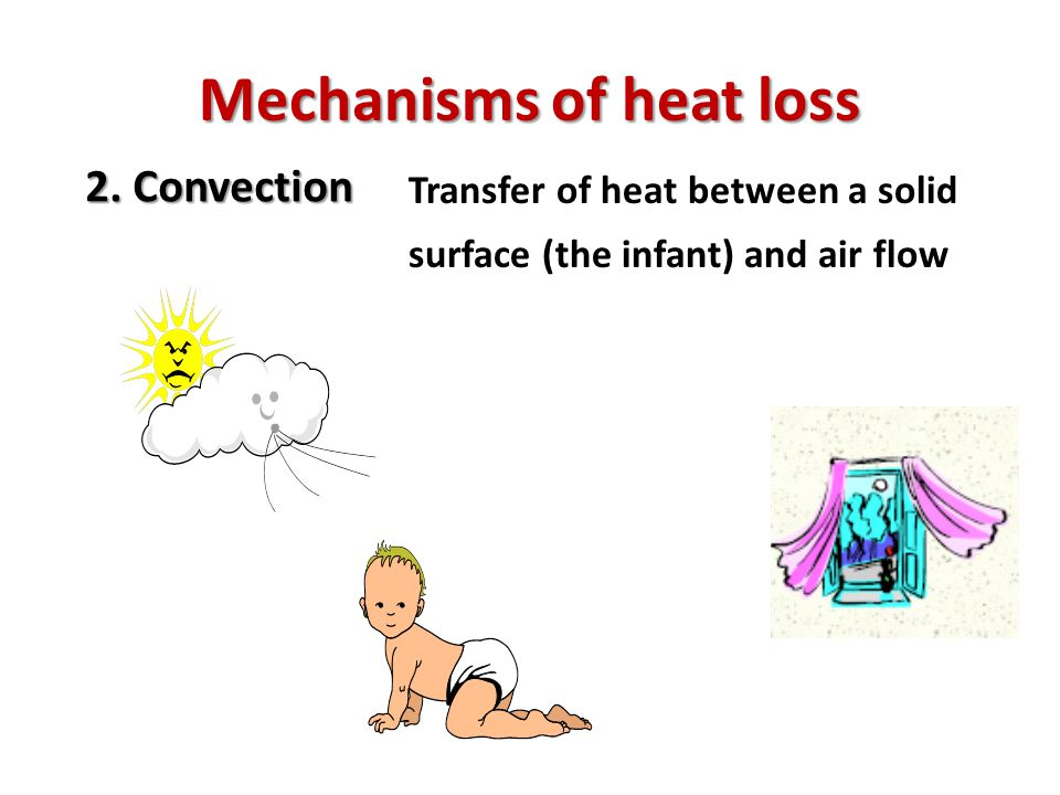 Mechanisms of heat loss