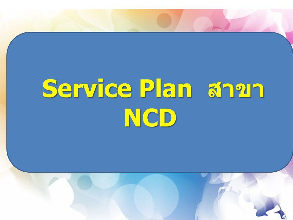 Service Plan สาขา NCD