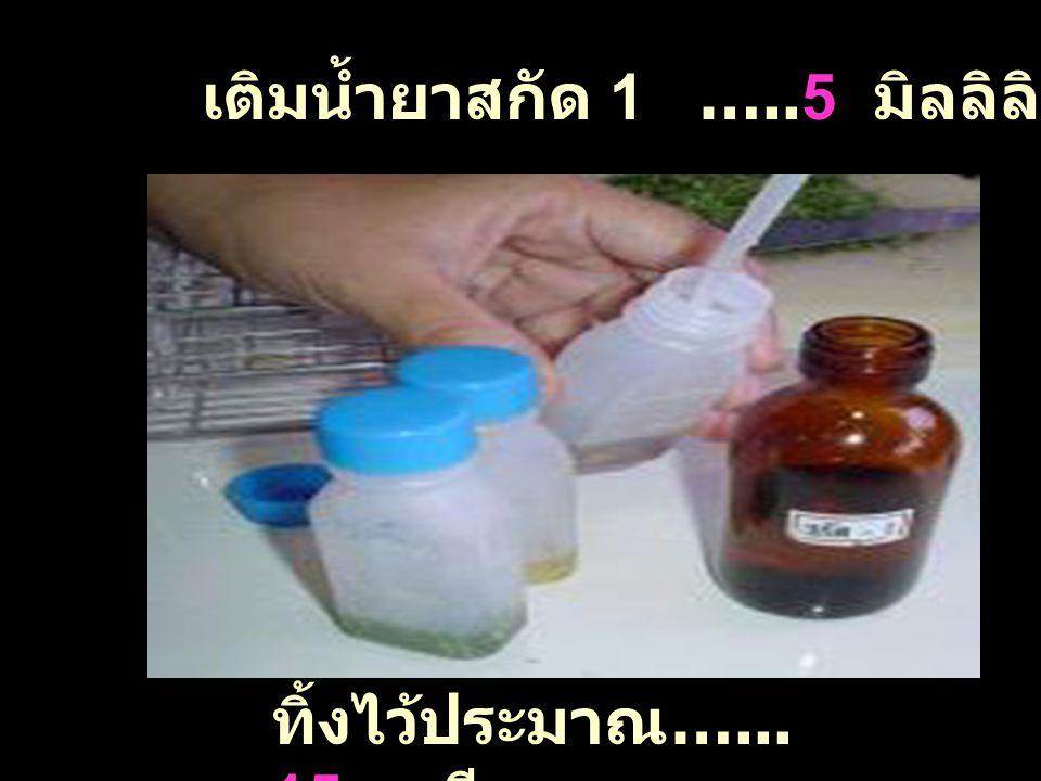 เติมน้ำยาสกัด 1 …..5 มิลลิลิตร