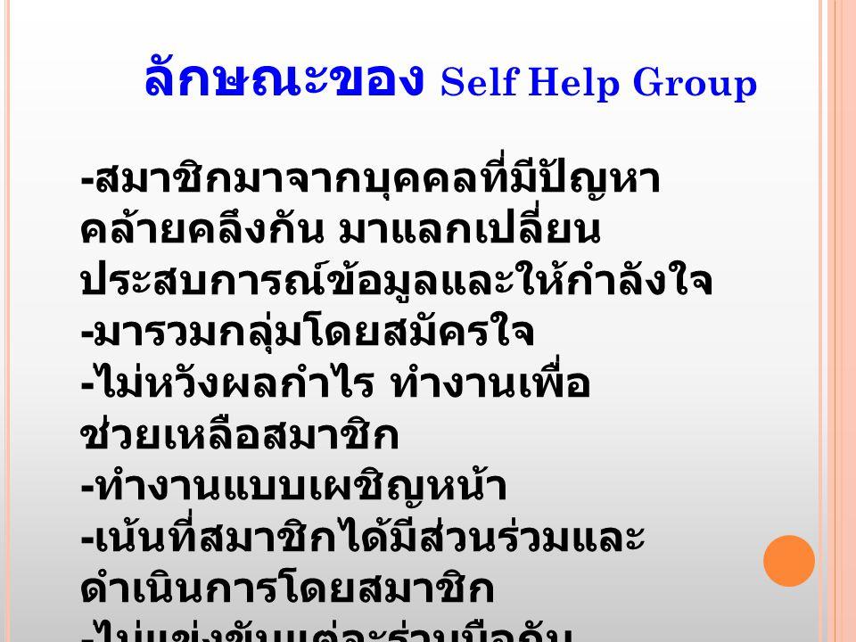 ลักษณะของ Self Help Group
