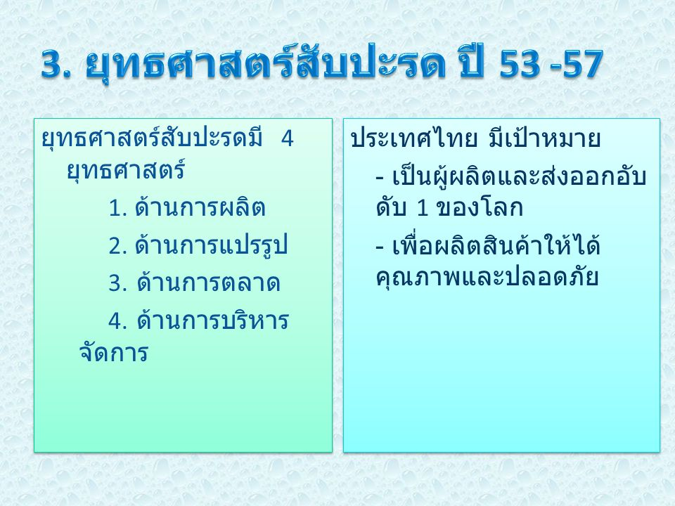 3. ยุทธศาสตร์สับปะรด ปี 53 -57