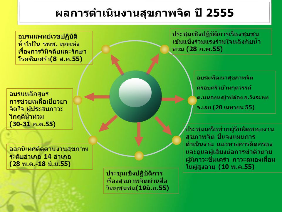 ผลการดำเนินงานสุขภาพจิต ปี 2555